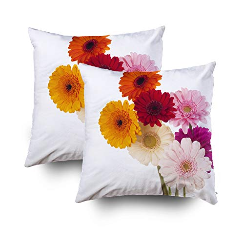 Musesh Pack of 2 Daisy Flower Gerbera Bouquet Isolated White Background Cushions Throw Pillow Cover for Sofa Home Decorative Pillowslip Gift Pillowcase 18X18Inch