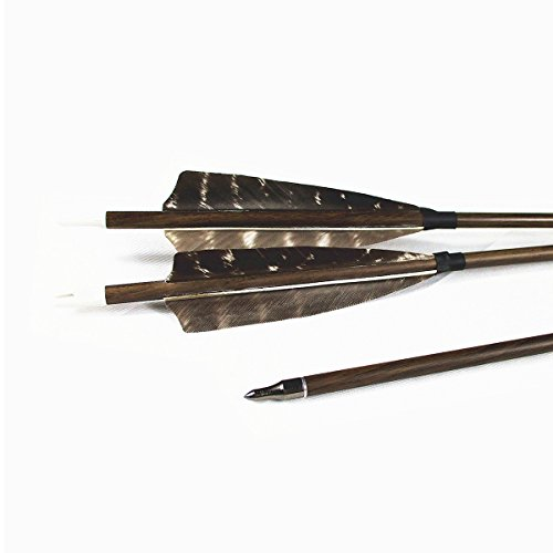 Carbon Archery Target Arrows,Letszhu Hunting Practice Arrows 400 Spine with Field Points Replaceable Tips and Real Feathers for Compound Recurve Bows (Pack of 6) (28 inch)