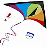 Best Rainbow Delta Kite, Easy Fly for Kids and Beginners, Single Line w/