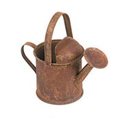 Watering Can - Rusty Tin - 3-3/4 - Tin Watering Can