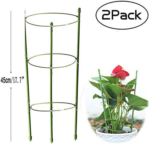 Rankhilfe für Gartenpflanzen, mittelgroß, für Garten und Außenbereich, Rankgitter aus Edelstahl, mit 3 verstellbaren Ringen, 45 cm, 2 Stück