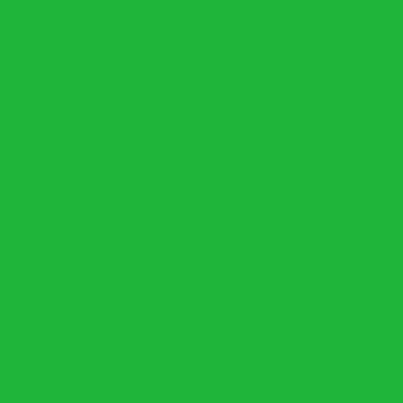 Oracal 651 Vinyl Roll 12'' x 50 yard (150 feet) (Yellow Green)