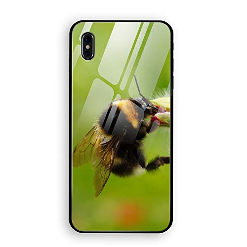 Flower and Bumblebee Phone X Case with Phone stents, Tempered Glass Hard Back Cover Printed Protective Anti-Scratch Shell for Phone - Bumble Zelda Bee