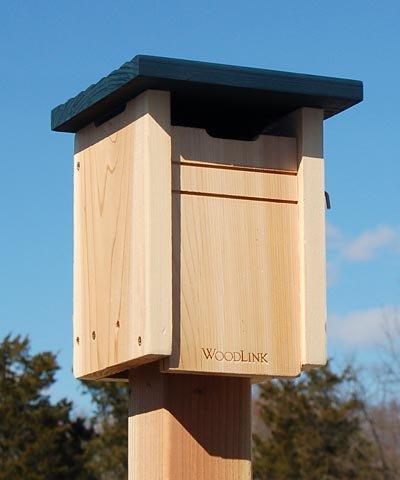 Tree House Swallow (Bluebird/Swallow House)