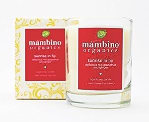 Mambino Organics Aromatherapy Candles by Mi Amore Skincare LLC