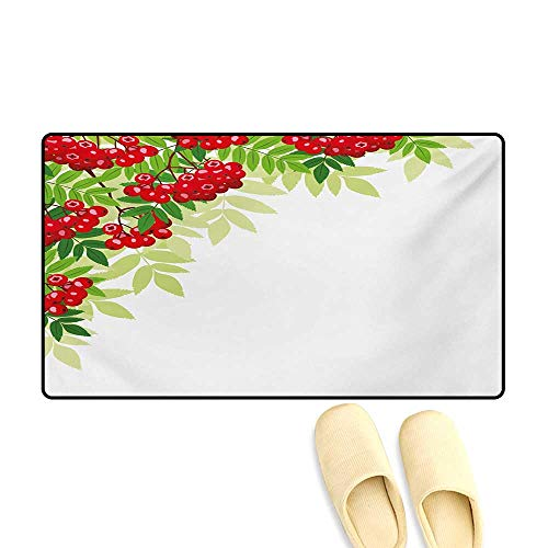 Birch Corner Hearth - Doormat,Vibrant Bunch of Ripe Berries with Fresh Green Leafage Corner Design,Bath Mat for Tub Bathroom Mat,Red Lime Green Apple Green,16