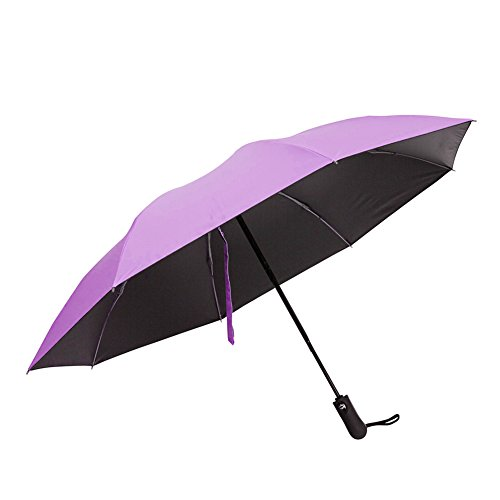 Windproof Protection Umbrella Reinforced Carrying product image