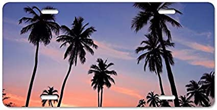 Dant454ty Sunset Palm Trees In Sri Lanka Placa Frontal Decorativa Placa de matr/ícula 6 x 12 Pulgadas Marco para Placa de matr/ícula