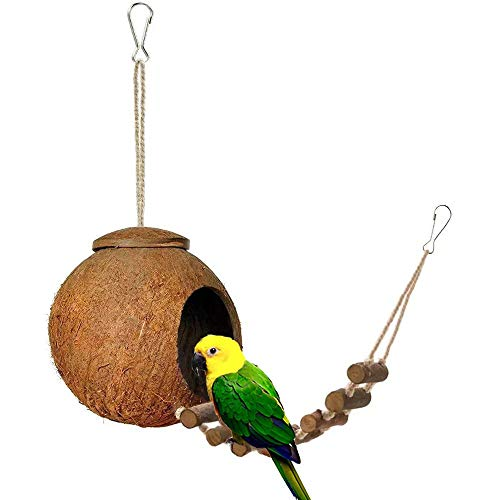 Coconut Bird - Beangel 100% Natural Coconut Hideaway with Ladder, Natural Nest Lovebird Sparrow Coconut Shells Bird House, Bird and Small Animal Toy (Resting Ladder Hut)
