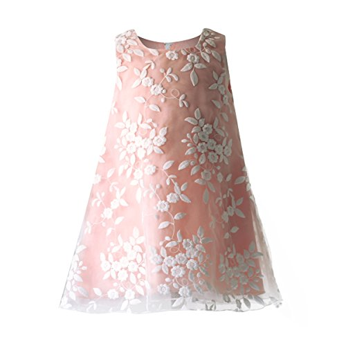 Funtrees Princess Girls' Floral Embroidered Organza Dress Size 6-12 Months Pink - Floral Embroidered Organza Dress