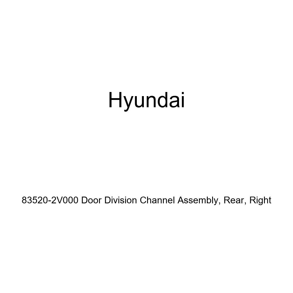 Rear Right Genuine Hyundai 83520-2V000 Door Division Channel Assembly