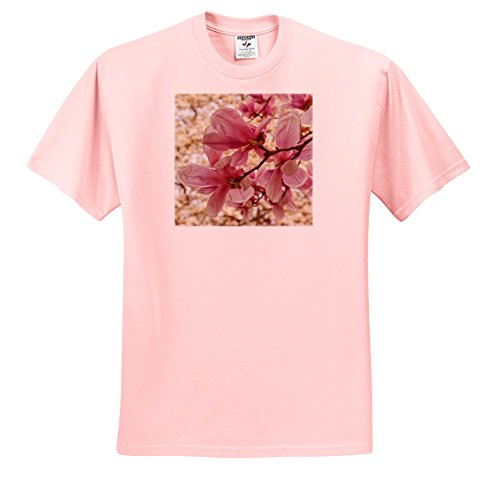 Danita Delimont - Flowers - yulan Magnolia Blossoms, Cave Hill Cemetery, Louisville, Kentucky - T-Shirts - Toddler Light-Pink-T-Shirt (3T) (TS_259356_48)