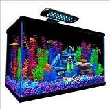 Perfecto Manufacturing APFNV33121 Tetra Goldfish Starter Kit for Aquarium, 10-Gallon
