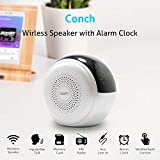 Soopii Conch Wireless Bluetooth Speaker with Dual Alarm Clock and FM Radio, Sensitive