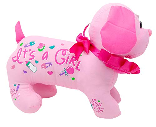 It's A Girl Autograph Hound