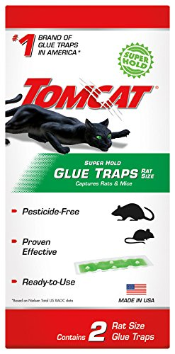 Tomcat Super Hold Glue Traps Rat Size - 2 Traps | Captures Rats & Mice | Also Used for Cockroaches, Scorpions, Spiders & Most Other Pests - Mouse Trap Boats
