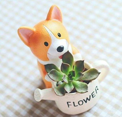 Youfui Animal Cartoon Decoration Succulent
