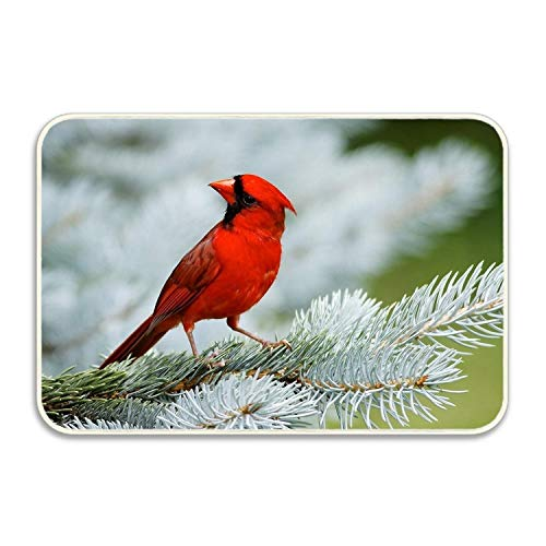 - Niaocpwy Animals Birds Cardinals Non-Slip Kitchen Mat Rubber Backing Doormat Runner Rug