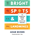 Bright Spots & Landmines: The Diabetes Guide I Wish Someone Had Handed Me