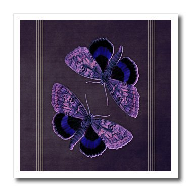 3dRose Blue and Purple Butterflies on A Textured Purple Background with Yellow Line Accents-Iron on Heat Transfer, 8 by 8