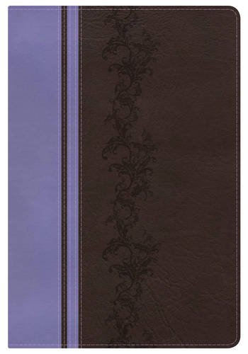 KJV Rainbow Study Bible, Brown/Lavender LeatherTouch, Indexed