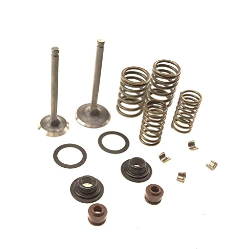 Glixal ATMT1-063 157QMJ 150cc GY6 Engine INTAKE & EXHAUST Valves Set Valve kit with Valve Spring Assembly Kit for Chinese Scooter Moped ATV Go Kart (Racing Exhaust Valve)