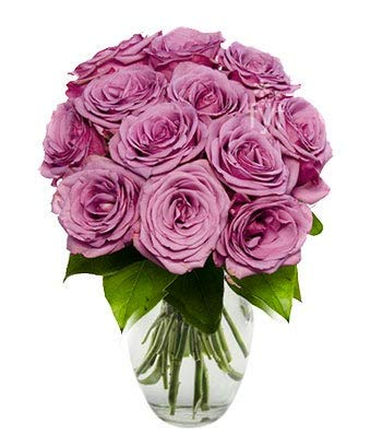 Flowers - One Dozen Purple Roses (Free Vase Included) by From You Flowers (Image #3)