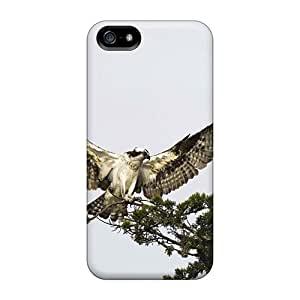New Arrival Animals Birds Hawk For Iphone 5/5s Case Cover
