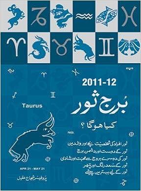 Burj Saur: Shujah Aqeel: 9789614714329: Amazon com: Books
