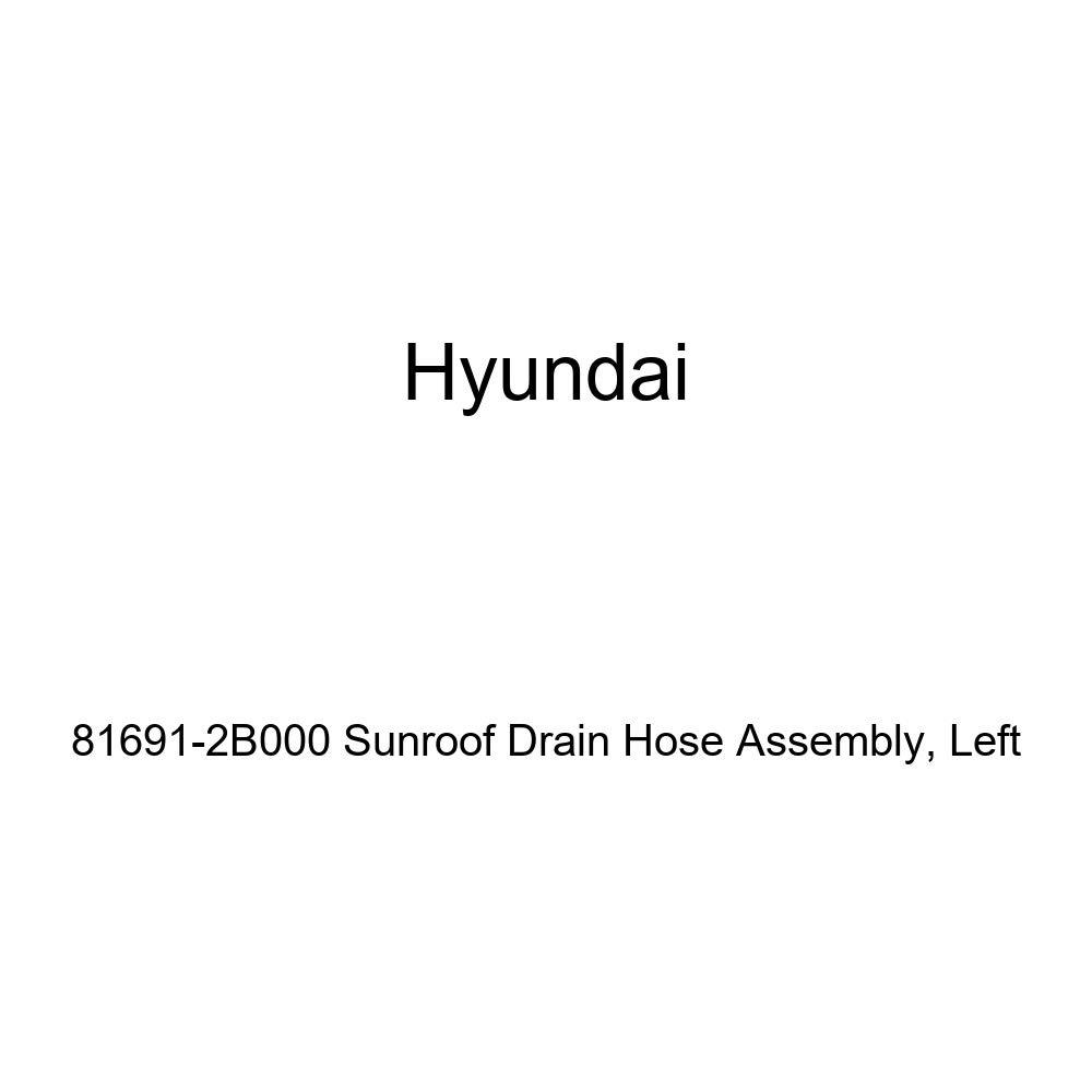 Left Genuine Hyundai 81691-2B000 Sunroof Drain Hose Assembly