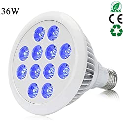 Esbaybulbs 36W Blue LED Plant Grow Light Bulb for Greenhouse Indoor Plant Flower Veg Seeding