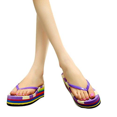 Transer 2017 1Pair Las mujeres del verano de Bohemia dulce fracasos de tirón sandalias clip del dedo del pie zapatos de playa de las sandalias Púrpura
