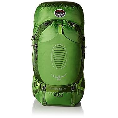 Osprey Men's Atmos AG 65 Backpack, Absinthe Green, Medium