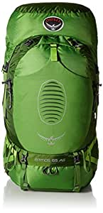 Osprey Men's Atmos AG 65 Backpack, Absinthe Green, Small
