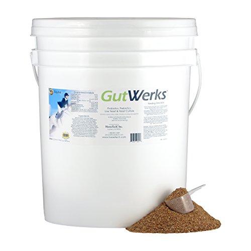 HorseTech GutWerks (25 lbs.) by Horsetech