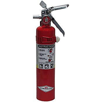 Amerex Dry Chemical Fire Extinguisher - B417T - 2.5 Pounds