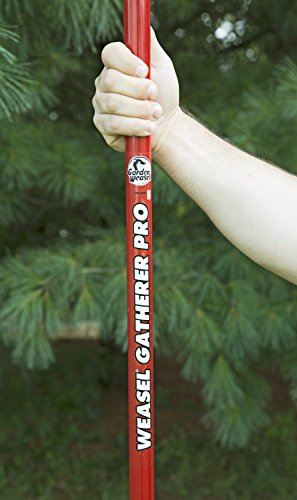 Weasel Large Nut Gatherer 95404 Red Buy Online In Uae Lawn Patio Products In The Uae