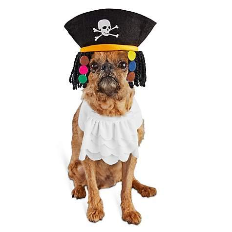 Bootique S/M Dog Halloween Costume Pirate Hat Dreadlocks Jabot Collar Small -