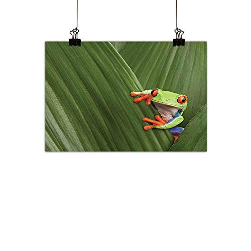 (Warm Family Animal Modern Oil Paintings Red Eyed Tree Frog Hiding in Exotic Macro Leaf in Costa Rica Rainforest Tropical Nature Canvas Wall Art Green 31