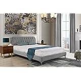 Mid Century Modern Elegant Velvet Bed Frame (Queen, Dark Grey)