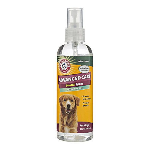 Arm & Hammer Advanced Care Tartar Control Dental Spray for Dogs, Mint Flavor, 4 Ounces