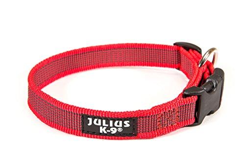 Julius-K9 Color & Gray Collar, 25 mm (39-65 cm), Red-Gray ()