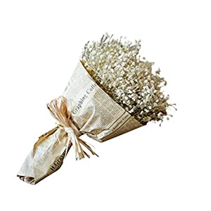 Euone® Natural Dried Flower Baby's Breath Home Decor Natural Dried Flower Full Stars Gypsophila 22
