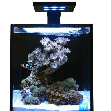 Innovative Marine NUVO Fusion 10 Nano All-in-One Aquarium