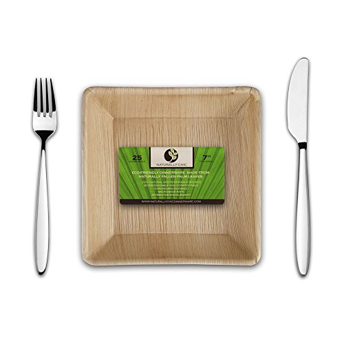 Disposable Eco Palm Paper Bowls: Square Compostable, Biodegradable Heavy Duty Soup, Salad, Dessert Party Bowl - Comparable to Bamboo Wood Fiber - Nice, Elegant Looking Plant Based Dishware: 25 Pack (Tan Pie Plate)