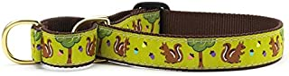 product image for Up Country Nuts Martingale Dog Collar