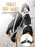 Mighty Paw Double Dog Leash - Our Two Dog Lead is