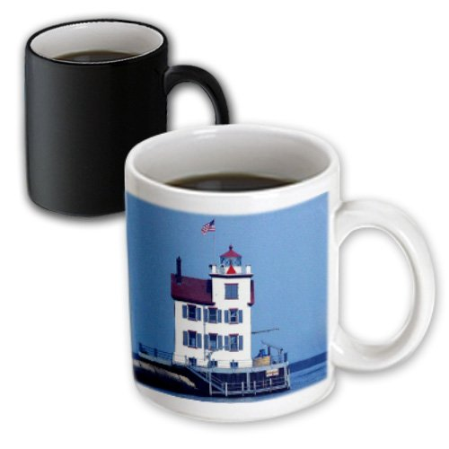 3dRose Sandy Mertens Ohio - Lorain Lighthouse in Lorain Looking Over Lake Erie - 11oz Magic Transforming Mug (mug_61706_3)