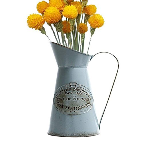 APSOONSELL French Style Large Flower Vase Metal Rustic vase Pitcher Primitive Jug Can -
