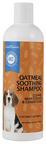 Coconut Club - Dog Shampoo - American Kennel Club - Eliminates Odor, Moisturizes, Conditions and Cleans (16 OZ) (Coconut Oatmeal)